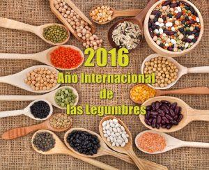 2016-ano-internacional-de-las-legumbres-1
